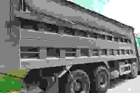 Bộ GTVT yêu cầu đình chỉ các nhà thầu dùng xe quá tải thi công công trình