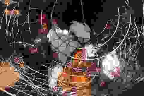 Đột kích trường gà trong khu dân cư, bắt giữ 14 con bạc