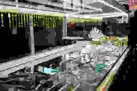 Vụ cướp tiệm vàng táo tợn tại Bình Dương: Bắt 5 người bán vàng giúp kẻ cướp