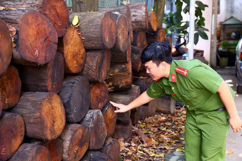 Vận chuyển gỗ quý, bị phạt 150 triệu đồng