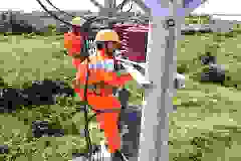 Miền Nam lên phương án đảm bảo cung cấp điện trong dịp Lễ, Tết
