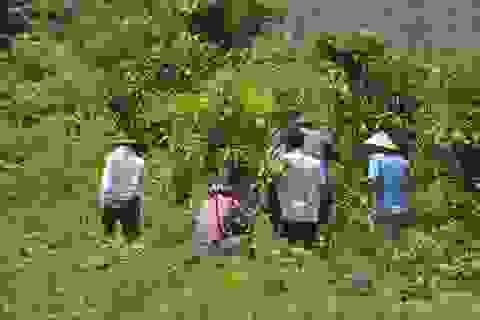 Toàn cảnh 63 giờ truy bắt hung thủ trong vụ thảm sát  ở Yên Bái