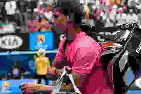 Nadal gục ngã trước Berdych