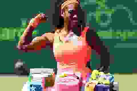 Murray vào bán kết, Serena Williams cán mốc 700 chiến thắng