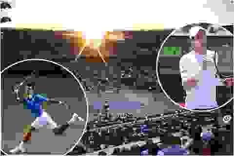 Djokovic tranh cúp vô địch với Murray
