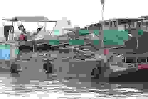 Cần Thơ: Thành lập Ban chỉ đạo bảo tồn và phát triển chợ nổi Cái Răng