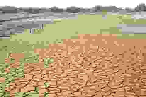 ĐBSCL đối mặt hàng trăm mối lo từ biến đổi khí hậu