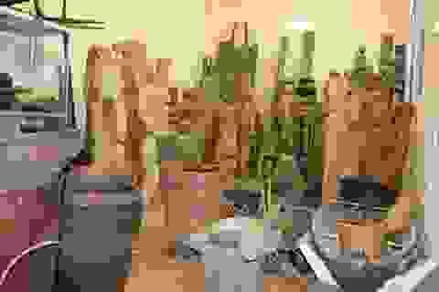 """Hàng ngàn cổ vật phải """"đắp chiếu"""" vì thiếu chỗ trưng bày"""