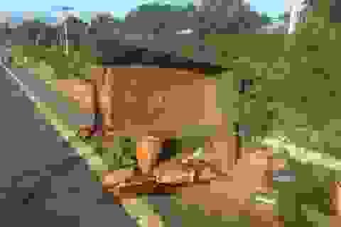 Vụ tai nạn thảm khốc 5 người chết: Tài xế dùng bằng giả