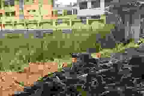 Thi lớp 10 THPT của Hà Nội: Dựng rào sắt, che rèm cửa... đảm bảo an toàn phòng thi