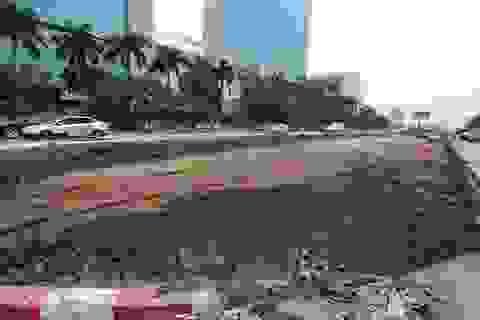 Hà Nội phá bỏ dải phân cách giữa đường Trần Duy Hưng