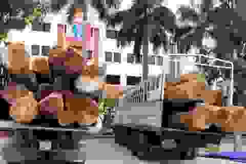 Bắt 2 xe tải chở hơn 70 tấn gỗ táu đỏ không có giấy tờ hợp lệ