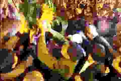 """Hỗn loạn cảnh """"cướp lộc"""" ở lễ hội Khai ấn Đền Trần"""
