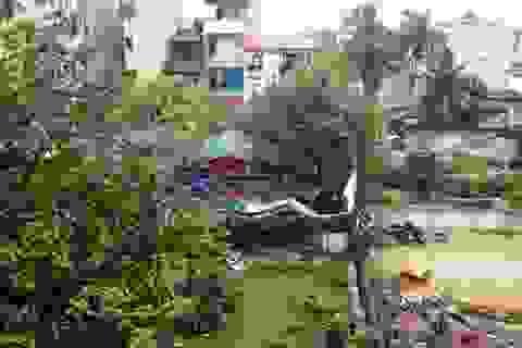 Thanh Hóa: Lập dự án lấy đất của dân bán cho doanh nghiệp