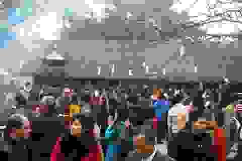 Phục dựng thêm nghi lễ rước kiệu Ngọc Lộ tại lễ hội Đền Trần