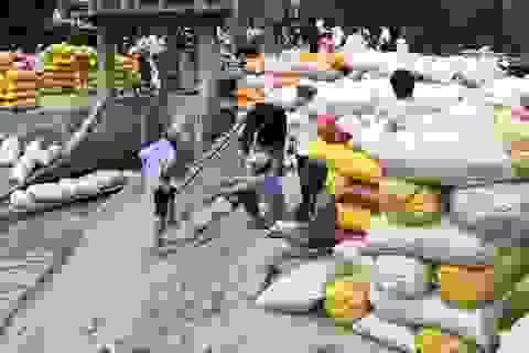 Thái Lan đang nợ nông dân 3,6 tỷ USD tiền lúa gạo