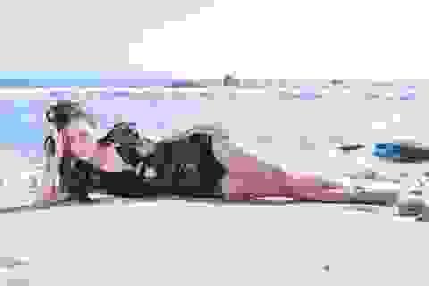Jennifer Phạm gợi cảm trên bãi biển