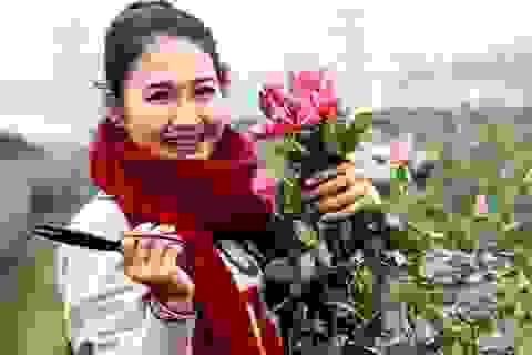 """Ba địa điểm chụp ảnh Tết tây """"hot"""" nhất Hà Thành"""