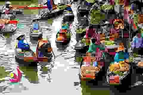 Lên lịch cho chuyến khám phá Việt Nam trong 12 tháng