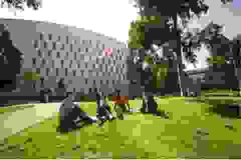 Chia sẻ kinh nghiệm du học Úc cùng ĐH Deakin tại TP.HCM và Cần Thơ