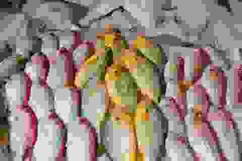 """Giá hải sản toàn cầu tăng vọt do """"cơn khát"""" của Trung Quốc"""