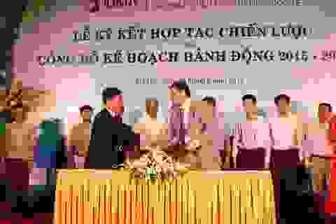 Doanh nghiệp nước ngoài bắt tay chế biến mắc ca với Việt Nam