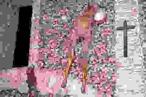 Nhà thờ được làm hoàn toàn bằng… xương người