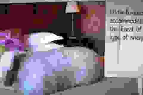 Độc đáo khách sạn hạng sang dành cho… cừu