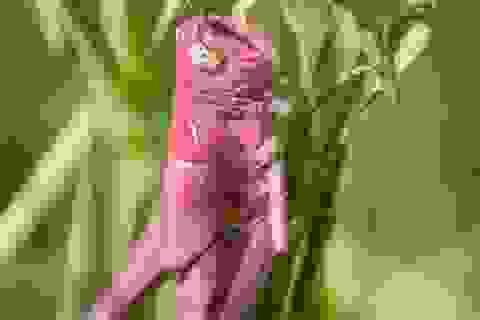 Chụp được ảnh châu chấu màu hồng cực quý hiếm