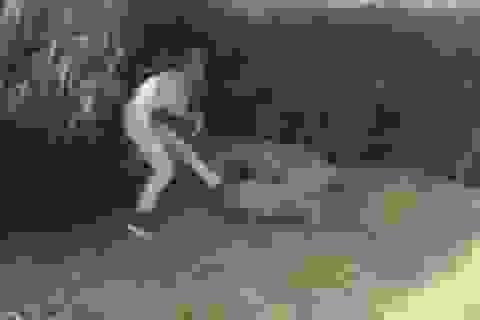 """Clip """"cô gái bị cá sấu tấn công"""" nổi bật nhất Internet tuần qua"""
