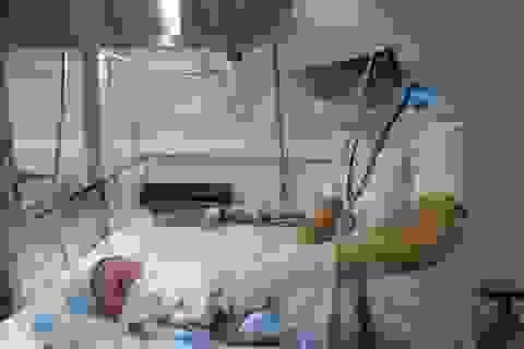 50% bệnh viện tỉnh bác sĩ phụ trách sơ sinh yếu kém
