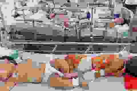 """TPHCM: Bệnh viện quá tải vì """"dịch chồng dịch"""""""