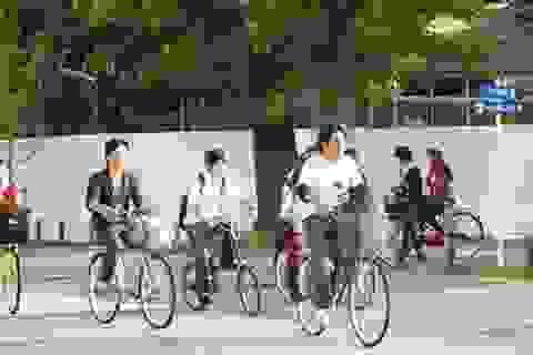 Điểm danh những thành phố nên khám phá bằng xe đạp