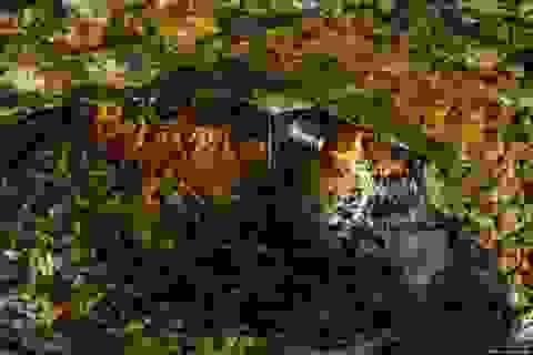Độc đáo tour khám phá trong lòng... núi lửa