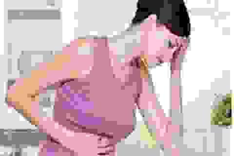 Những dược liệu điều trị U xơ tử cung, U nang buồng trứng