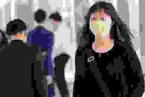 WHO khuyến cáo khách du lịch tránh tiếp xúc gia cầm tại vùng dịch