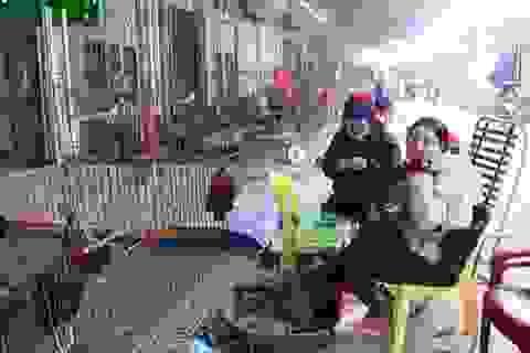 """Hà Nội: Thản nhiên sống chung với """"thần chết"""" cúm gia cầm"""