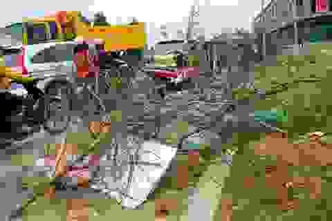 Lào Cai: Hàng ngàn cành đào chợ hoa xuân thành củi đun