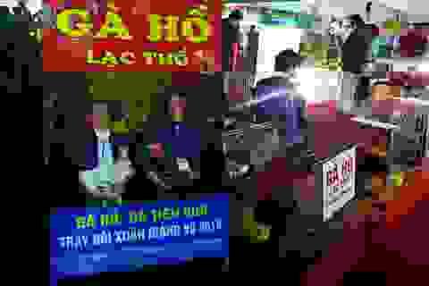 Đi hội chợ xuân, ngắm gà Hồ tiến vua, gà chín cựa