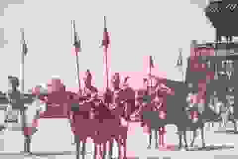 Ngựa trong Hoàng cung Huế xưa