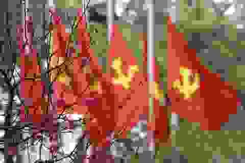 Hà Nội đỏ rực cờ hoa mừng Đảng mừng xuân