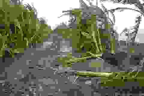 Lốc xoáy tàn phá ven biển Sóc Trăng