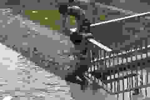 Thót tim cảnh thanh niên nhảy cầu khi triều cường dâng