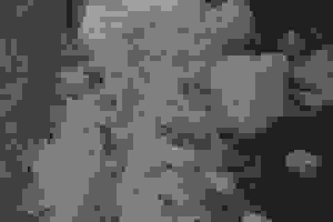 Lào Cai lại xuất hiện mưa đá, gió lốc gây thiệt hại nặng