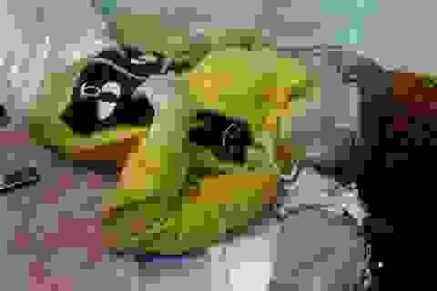 """Trần tình của người mẹ trẻ trong """"nghi án mưu sát con"""""""
