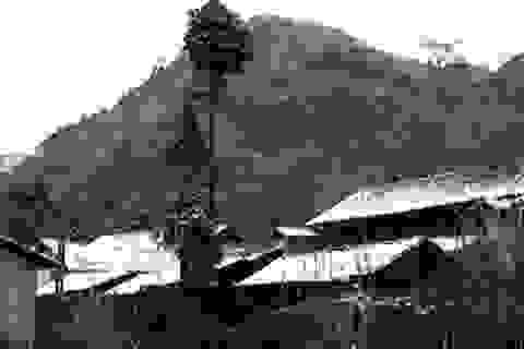"""Cao nguyên đá Đồng Văn """"đông cứng"""" trong cái rét 1 - 2 độ C"""