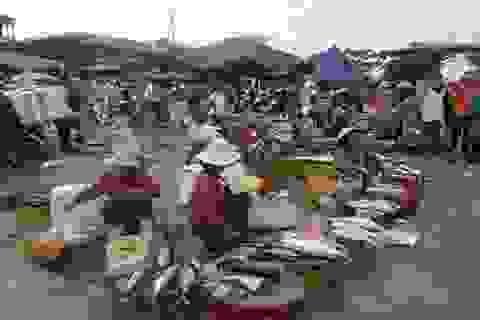 Đi chợ cá ... đầu Xuân