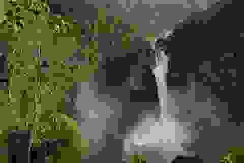 Ecuador bán rừng nguyên sinh để trả nợ Trung Quốc