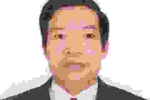 Cách chức một phó chủ tịch huyện vì sai phạm đất đai
