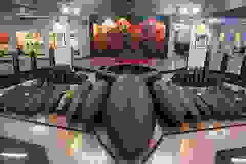 Trung bình mỗi năm Việt Nam có hơn 1.500 người chết vì bom mìn